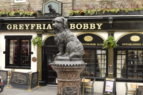 Greyfrirs Bobby, the famous small dog that sat on his owners grave for years.